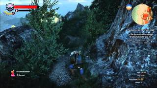 How to find the entrance to passages under Temple Isle - Cat School Gear - The Witcher 3: Wild Hunt
