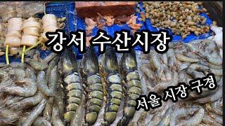 강서수산시장/해산물장보기/해물칼국수/서울시장구경/서울구…