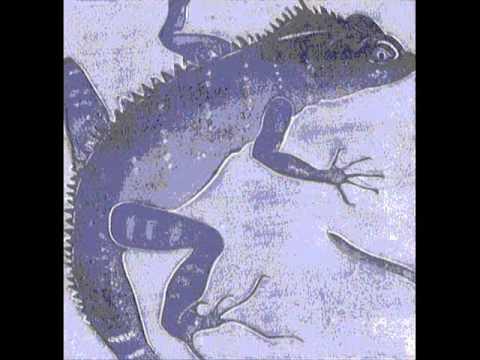 Sombre Reptiles, Live 801 (eno and manzanera)