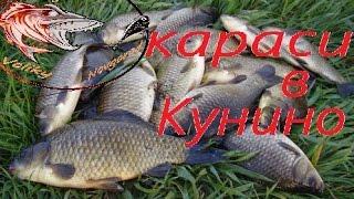 Ловля карасей на донку в плохую погоду в Кунино. Рыбалка с Денчиком. Kynino. Fishing with Denchik.