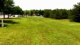 Two Pit Bulls Trained By Off-leash K9 Training! Dog Trainer Northern Va, Nj, Pa, Nc, And Dc