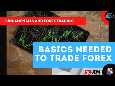 fundamentals-and-forex-trading-|-know-the-basics-needed-to-trade-forex