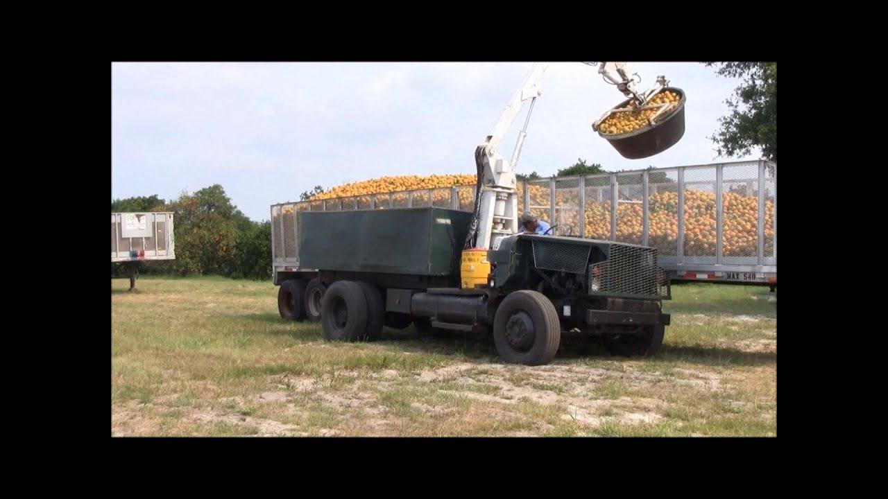 Citrus Loader Model Cl 3 Petersen Industries Youtube