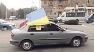 Пьяный за рулем - убийца Запорожье - ТВ-5(Сюжет: ТВ-5. Мониторинг: