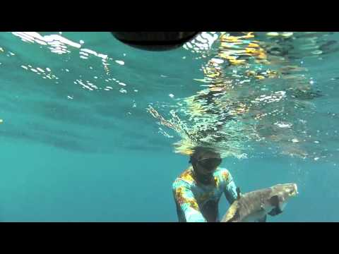 SubSea Spearguns Summer of 2012 with Justin Baker.