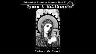 Tymon & Waldhaus - Purgatory (ISRDIGI029)