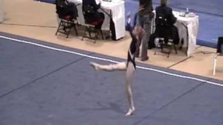Krista Collins state team. Level 8Floor Ex-Region 8 championships