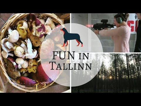 Vlog from Tallinn: Bank holiday weekend