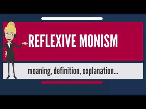 What is REFLEXIVE MONISM? What does REFLEXIVE MONISM mean? REFLEXIVE MONISM meaning & explanation