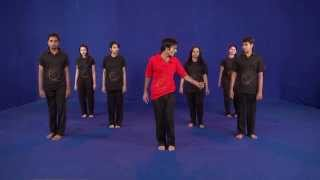 latest Garba( 24 steps dvd) ahmedabad gujarat : Egarba Tutorial with Irfan: Krishna Step HD