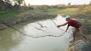 Wow! Best Cast Net Fishing 2020 - Catching Many Fish in Small Pond Use Caste net Fishing Skills