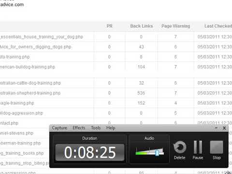 Powerful SEO Tool Free Positioning Website Number 1 in google Fast