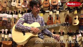 【IKEBE channel】試奏&解説:TAYLOR Ikebe Original Order GCce-ADS Flame Maple
