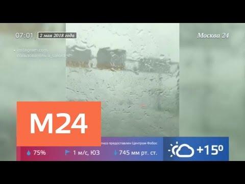 Сегодня в Москве может вновь прогреметь гроза - Москва 24