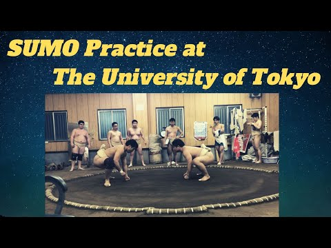 【相撲の稽古】あみた!VS 東京大学! SUMO practice at The University of Tokyo!