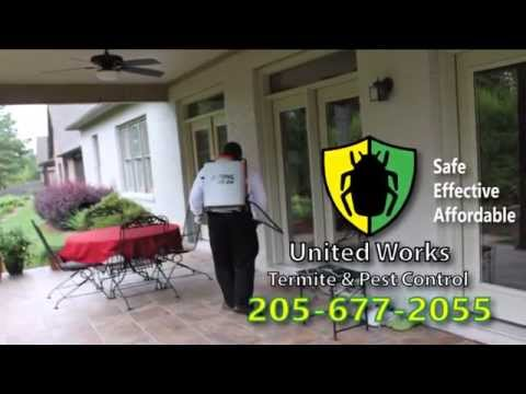 Pest Control Services in Chelsea, Alabama