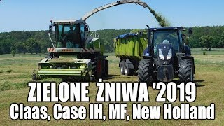 Zielone żniwa 2019 z maszynami Claas, Case, Massey Ferguson, New Holland