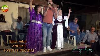 Bahoz Arslan Antalya Habipler Aşiret Düğünü 2018