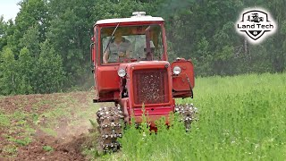 Легенда советского тракторостроения - гусеничный трактор ДТ-75 пашет заросшее поле
