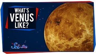 What's It Like on ... Venus?