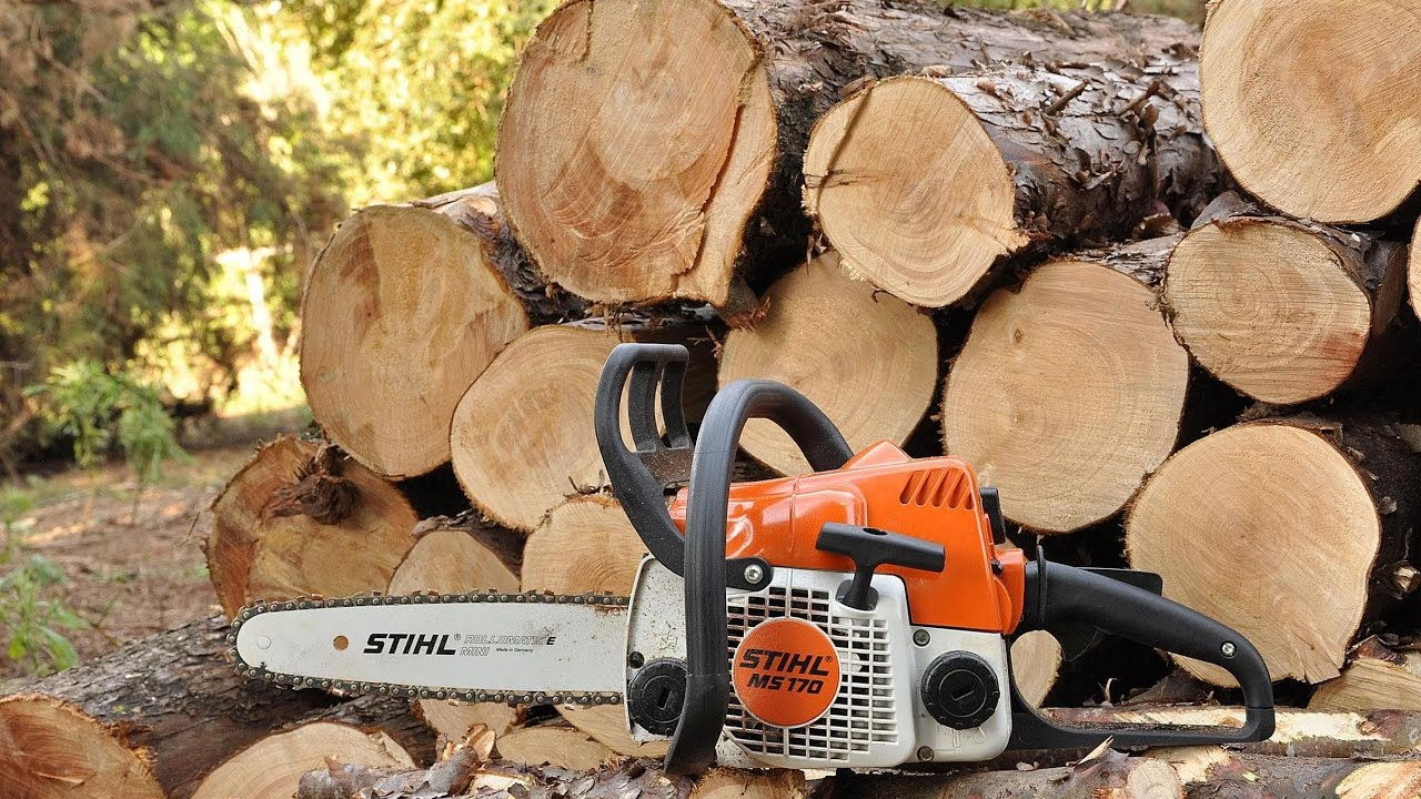 Chainsaws Taiga: characteristics, reviews and comparisons with competitors 5