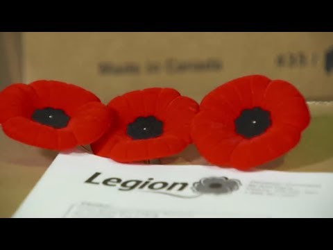 6c185d54f4 The Poppy Campaign