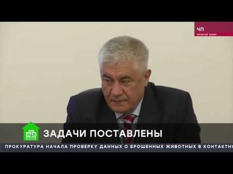 Владимир Колокольцев представил начальника УМВД России по Чукотскому автономному округу