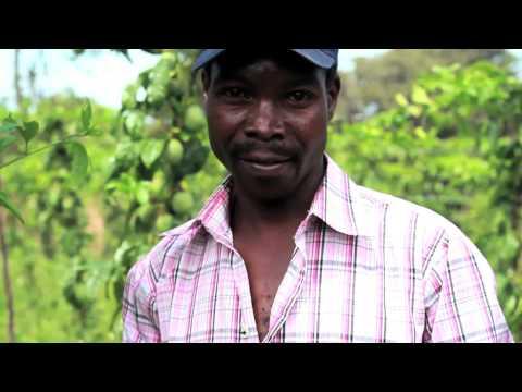 Kenya: IOM's Key Successes in Northern Kenya