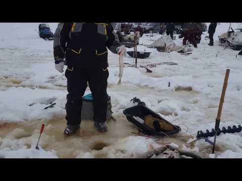 рыбалка на северной сосьве 2017