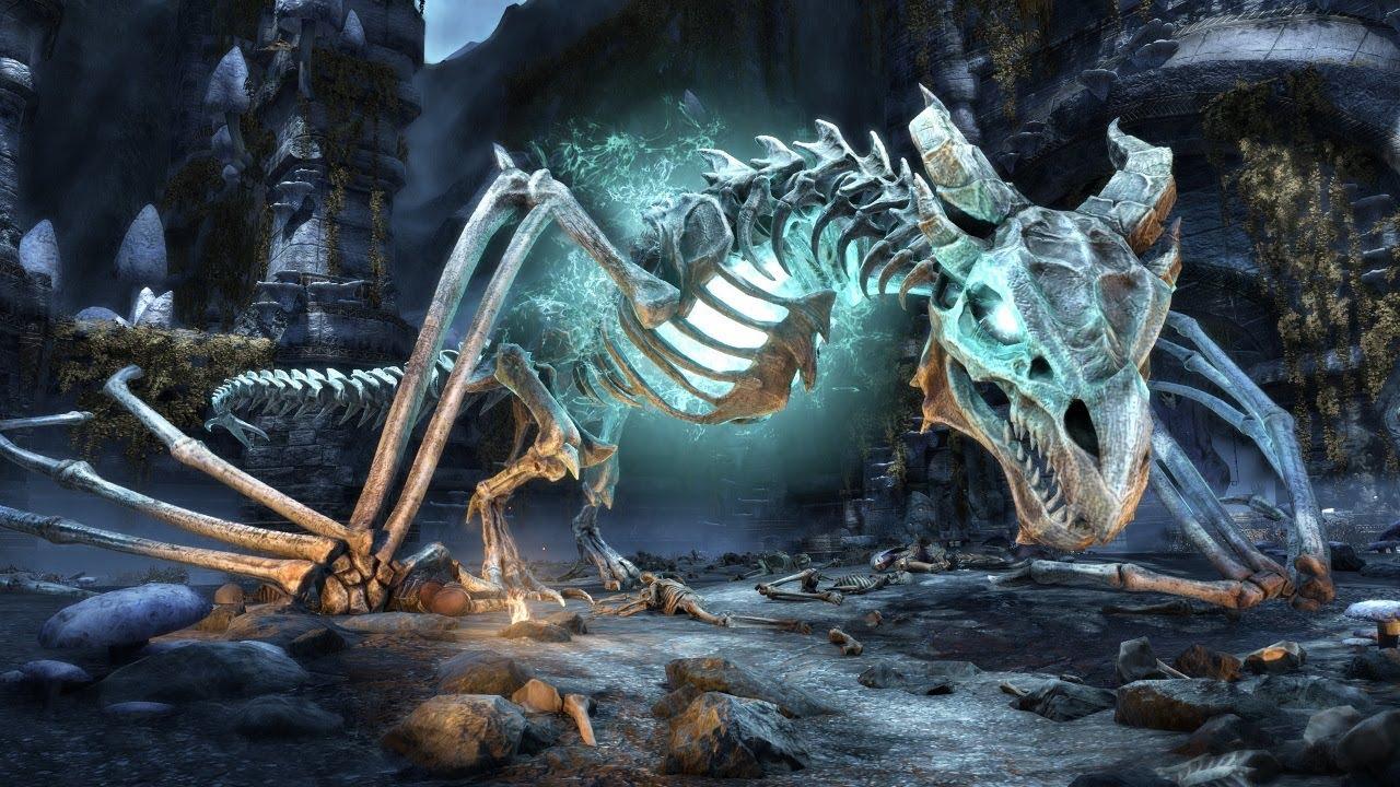 Bones Online Free