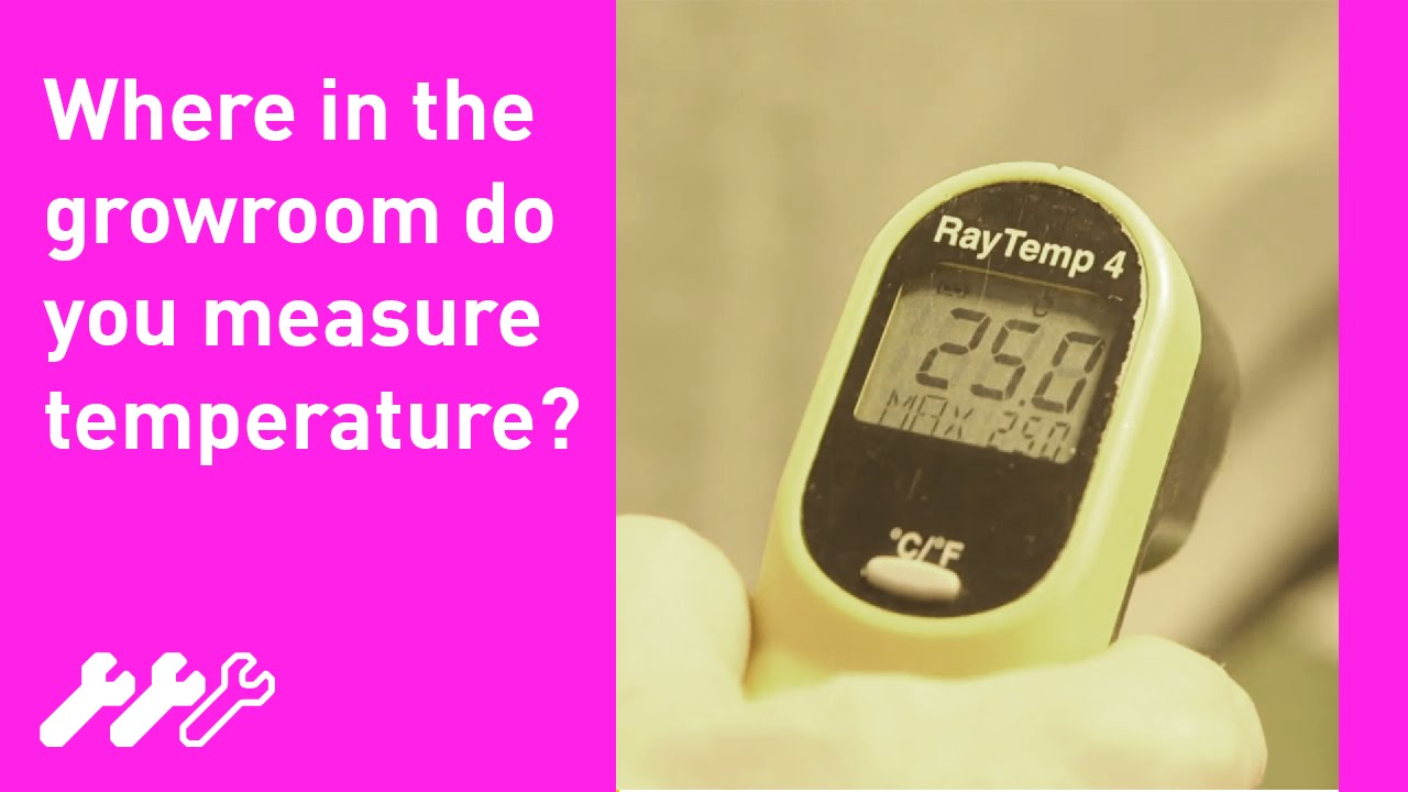 27 How To Measure Hydroponic Grow Room Temperature With