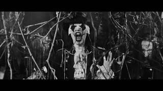 Avatar - King's Harvest (Official Music Video)