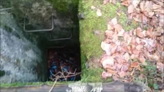 Prywatny Dom Górniczy o Zlej Slawie,Domek Czlonka organizacji todt