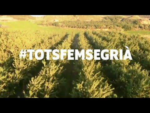 Campanya de productes de proximitat #TotsFemSegria