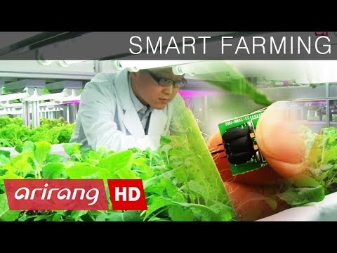 [InsideBiz] SMART FARMING, a blue ocean for future agriculture