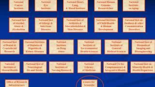 Career Development Webinar: NIH Individual Pre doctoral Fellowships for Graduate Students