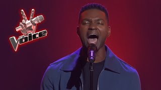 The Voice - Best Blind Auditions Worldwide (№19)