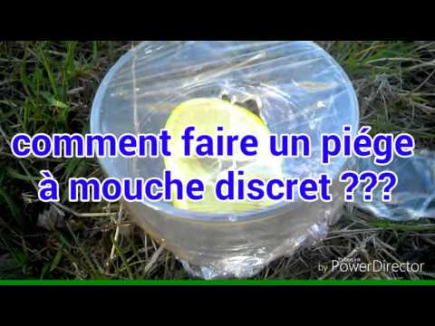Tuto comment faire un pi ge mouche youtube for Attrape mouche maison