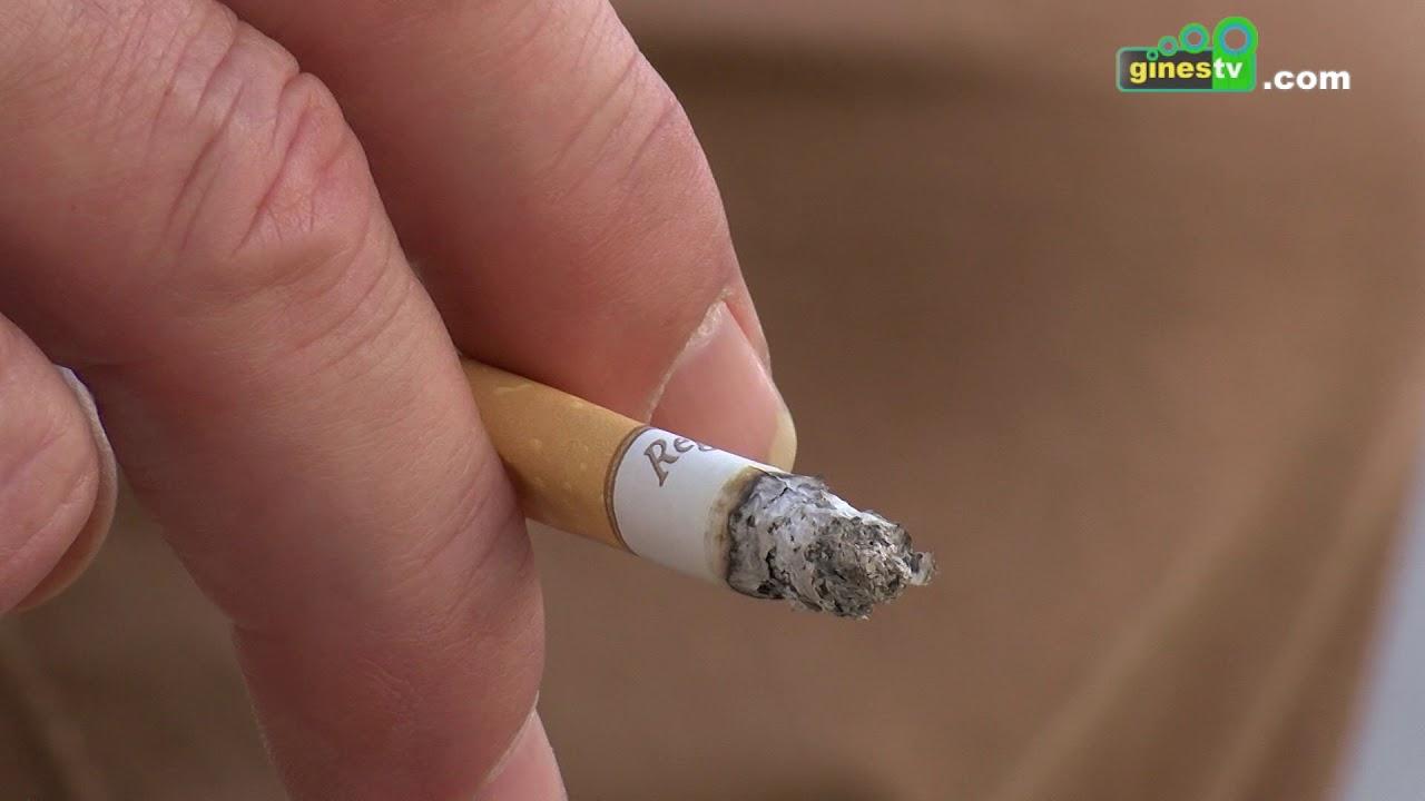 El Programa Ciudades ante las drogas informa sobre los perjuicios de la adicción al tabaco