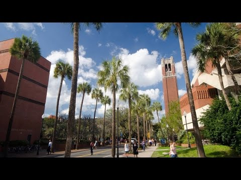 Short review of  University of Florida