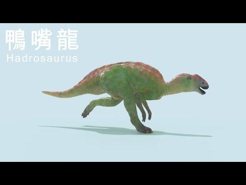Hadrosaurus 鴨嘴龍
