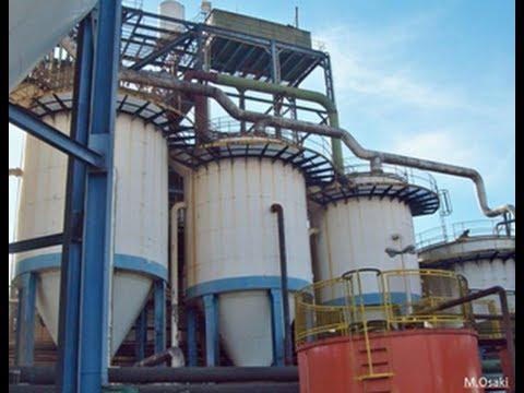 Optimal Industrial Bioreactor Design