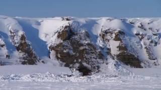 PBS NOVA   Arctic Dinosaurs   full documentary