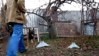 Копия видео Фильм 6  Поиск ВВ