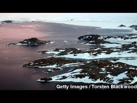 Melting Ice Shelves Drive Rapid Antarctic Sea Level Rise