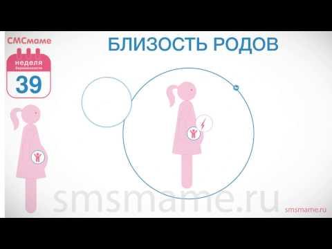 39 недель беременности по ночам болит живот