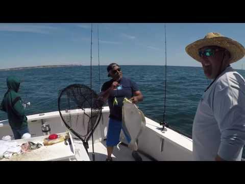 Booked Off Charters - 10lb Fluke - Rhode Island