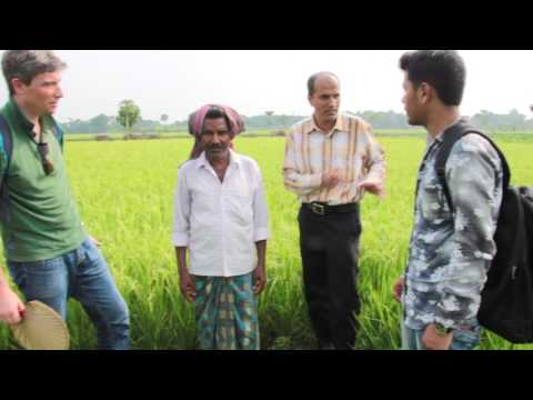 Shivia's Agri-Management Services Programme in West Bengal, India