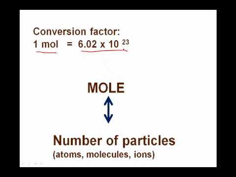 Unit 2 Mole introduction 1.wmv