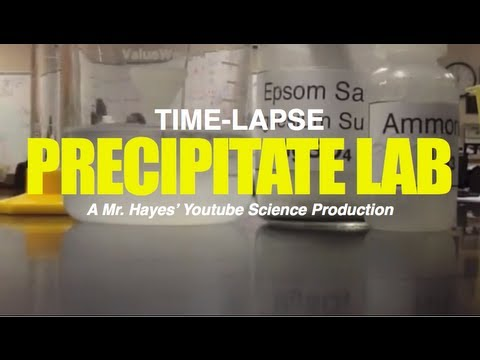 Mr  Hayes' Precipitate Lab TIME-LAPSE